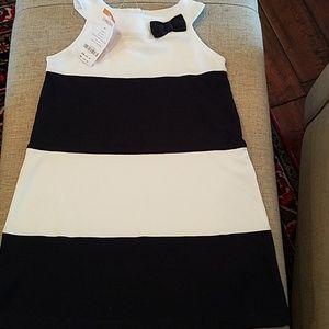 NWT Gymboree Girls Dress  Size 5T